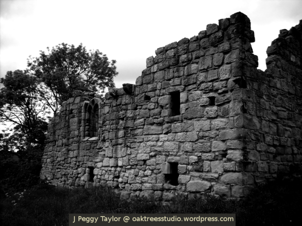 Medieval manor house - black and white photo